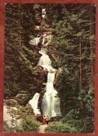 Eintrittskarte, Triberg, Wasserfall (91904) - Tickets - Entradas