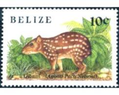 Ref. 29527 * MNH * - BELIZE. 1989. LITTLE MAMMAL. . PEQUEÑO MAMIFERO. - Belize (1973-...)