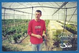 CPM Publicitaire Agriculture Culture Sous Serre De Légume Et Herbe Bio - Dos Imprimé - Cultures