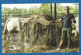 CPM Publicitaire Agriculture Elevage De Vache Charolaise Pascal Laffite Agriculteur Bio Dos Imprimé - Elevage