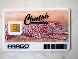 BEAUTIFUL DEMO CARD   CHEETAH       DEMO FARGO - Etats-Unis