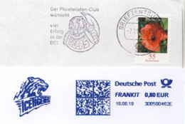 952  Nürnberg Ice Tigers: Club De Hockey Sur Glace: Ema D'Allemagne, 2019 - Nuremberg Ice Hockey Club Meter. Tiger - Hockey (sur Glace)