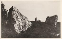 PIPRIAC  La Lande Cojou Les Menhirs - France