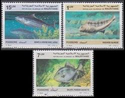 1987Mauritania920-922Sea Fauna5,50 € - Vita Acquatica