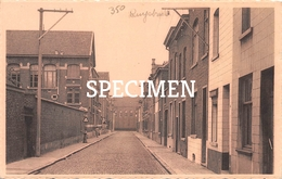 Schoolstraat - Ruisbroek - Puurs