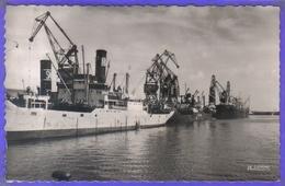 Carte Postale   59. Dunkerque Cargo Navires Marchands à Quai  Très Beau Plan - Dunkerque