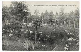 CHENOVE L'Escargotière Un Coin Du Parc D'élevage N°9, Envoi 1913 - Chenove