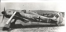 PHOTO AVION FOCKE WULF 190 A4 DU GIUPENSTAB ?? III/J62 RICHTOFEN ? SEPTEMBRE 1942 A POIX SOMME 17X6CM - Aviazione