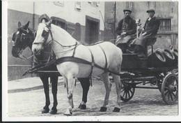 10X15  Livraison De Biere  En 1906 Place  Notre Dame     Par La Maisobn  Noel  Gilland - Luneville