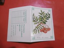 D 80 - Calendrier 1995 - Albert - Pharmacie Pierre Et Elisabeth Moitier - Fleurs Sorbier Des Oiseaux - Calendriers