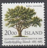 +Iceland 1983. Tree. Michel 634. MNH(**) - Ungebraucht