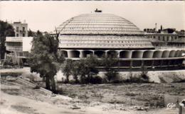 ALGERIE  SIDI- BEL- ABBES  Les Halles Centrales  .... - Sidi-bel-Abbès