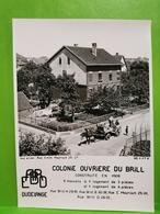 Dudelange, Colonie Ouvriere Du Brill, Construite En 1906. Attelage - Dudelange