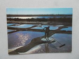 LA VENDEE TOURISTIQUE (85 ) COUCHER DE SOLEIL SUR LES MARAIS SALANTS ANIMEES  VOYAGEE 1979 - France