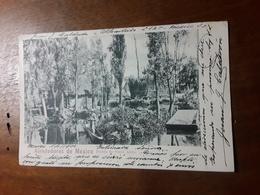 Cartolina Postale,  Postcard 1900, Alrededores De Mexico, Pueblo De Santa Anita - Mexico