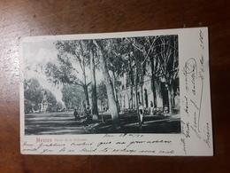 Cartolina Postale,  Postcard 1899, Mexico, Paseo De La Reforma - Messico