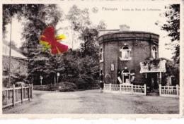 PATURAGES - Entrée Du Bois De Colfontaine - Carte Circulé - Colfontaine