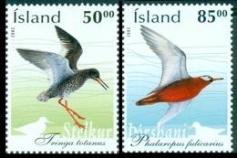 2002Iceland1022-1023Birds - Albatrosse & Sturmvögel