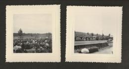 14 Caen / Circuit Automobile De La Prairie Vers 1950 / Lot De 2 Photographies En 8x8 - Caen
