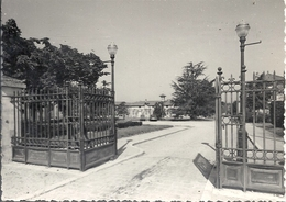 CPM Montesson Ecole Th Roussel Portail D'entrée - Montesson