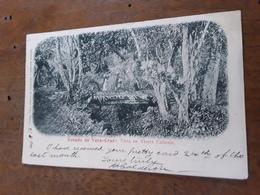 Cartolina Postale, Postcard 1900, Mexico, Estado De Vera Cruz, Vista En Tierra Caliente - Messico