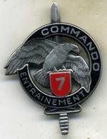 Insigne Centre D Entrainement Commando N° 7 ___drago - Army