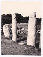 PHOTO 20 2A CAURIA Alignement De Stantari Menhirs  Lot De 11 Photos - Other Municipalities