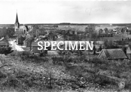 Panorama - Opoeteren - Maaseik