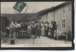VIEVILLE SOUS LES COTES - Charronnage - France