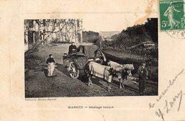 BIARRITZ - Attelage Basque - Edi L. Jerome - écrite - Em - Biarritz