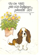 AN 1260, FANTASY  POST CARD  , CPM ,  , DOGS - Chiens