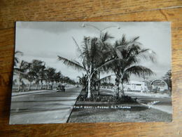 HAÏTI: PORT AU PRINCE -AVENUE H.S.TRUMAN - Cartes Postales