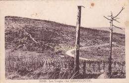 D 88 - Les Vosges La Chapelotte (cimetiere) - Autres Communes
