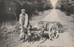 EN SOLOGNE 41 Ramasseur De Bois Mort - Non Classés