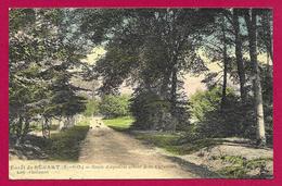 CPA Forêt De Sénart - Route Diagonale Allant à La Pyramide - Sénart