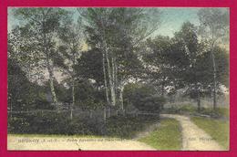CPA Forêt De Sénart - Route Forestière Des Bosserons - Sénart