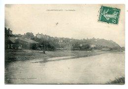 49 -  Maine Et Loire - Champtoceaux - La Patache  (0575) - Francia