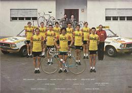 CARTE CYCLISME GROUPE TEAM SELLE ROYAL 1977 ( DECOUPE,, FORMAT 20 X 28, VOIR PHOTO DEL ANNONCE ) - Cyclisme