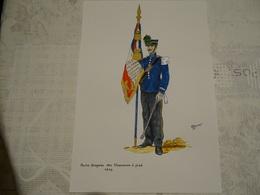 Planche Aquarellée. Porte-drapeau Des Chasseurs à Pied 1910 - Uniformes