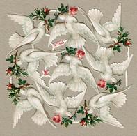 Albrecht & Meister - A & M N°7815 - SCRAP -  DECOUPIS  - Gaufré / Embossed - Birds / Oiseaux - Roses - 2 Scans - Animals