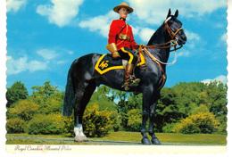 CPM  -  Photo D'un Membre De La Gendarmerie Royale Du Canada   Royal Canadien Mounted  Police - Kanada