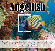 Nevis 2019 Fauna  Angelfish I202001 - St.Kitts Y Nevis ( 1983-...)
