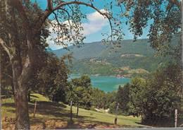 Le Lac D'aiguebelette Le Port D'aiguebelette 1974  CPM Ou CPSM - Aiguebelle