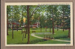 CPA USA - GREENSBORO - A Park Scene In Sunset Hills - TB PLAN Jardin Public + Vue Habitations Belles Maisons Au Bord - Greensboro
