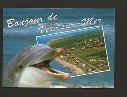 14 Un Bonjour De Ver Sur Mer / Vue Générale ( Dauphin ) - Sin Clasificación