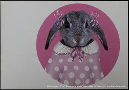 Famous Faces TAKKODA Pets Celebrity Photography Célébrités Animal Photographie Lapin Rabbit Rose - Animaux Habillés