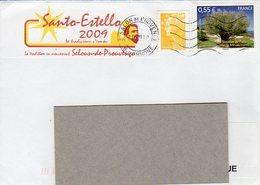 Sainte Estelle 2009 Salon De Provence - Manual Postmarks