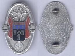 Insigne Du Corps Des Sapeurs Pompiers De Tours - Pompiers