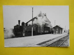 Photo ,GEIGER Train Mixte De Camaret, - Trains