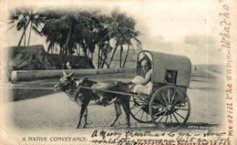 INDIA // INDE. A NATIVE CONVEYANCE - Inde